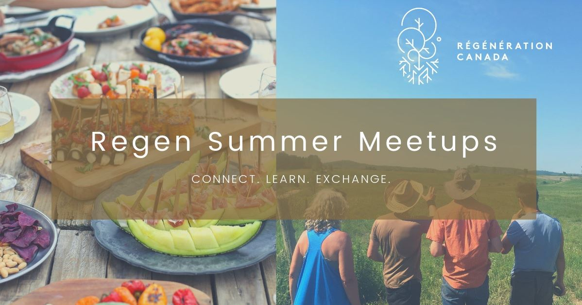 Regen Summer Meetups. Connect, Learn, Exchange
